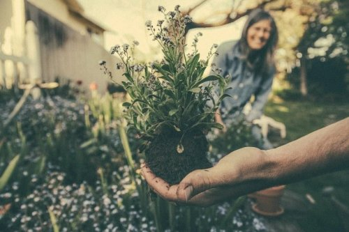 Nature-Based Activities Can Improve Mood and Reduce Anxiety - Neuroscience News