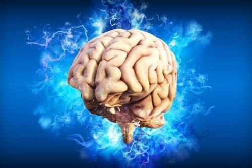 New Treatment Stops Progression of Alzheimer's Disease in Monkey Brains - Neuroscience News