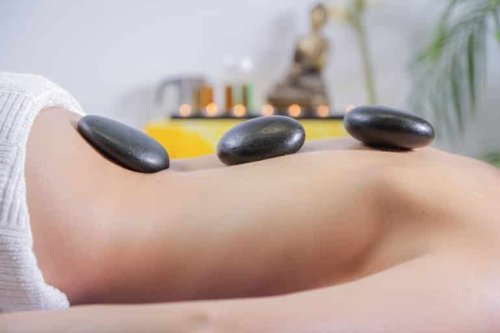 Massage Stones Help Uncover Role of Prefrontal Cortex in Sensory Perception - Neuroscience News