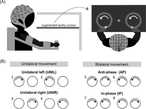 Two-Handed Movements Require More Neural Effort as People Grow Older - Neuroscience News
