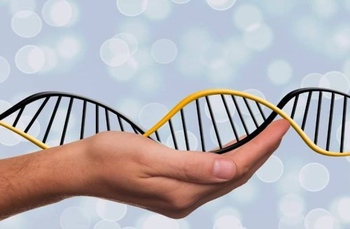 Discovery of Genetic Drivers Linked to Progression in Parkinson's Disease - Neuroscience News