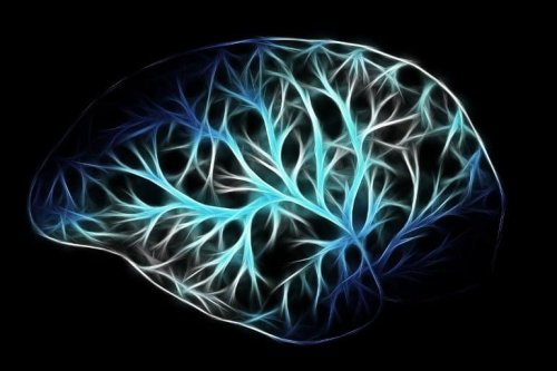 How the Brain and Fat Tissue Communicate - Neuroscience News