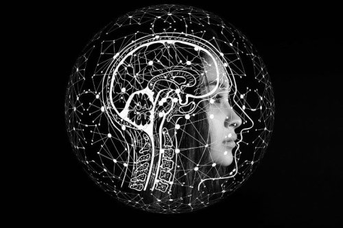 Machiavellianism Predicts Approval of Mind Upload Technology - Neuroscience News