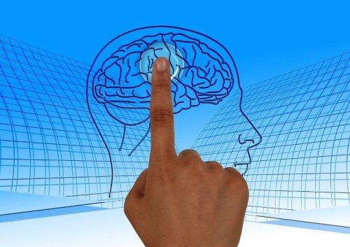 Drug Targets for Memory Enhancement - Neuroscience News