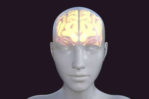 Common Alzheimer's Treatment Linked to Slower Cognitive Decline
