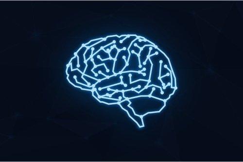 Betaine Supplement Treats Schizophrenia in Mice - Neuroscience News