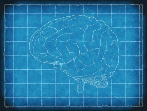 Researchers Build a Cellular Blueprint of Multiple Sclerosis Lesions - Neuroscience News