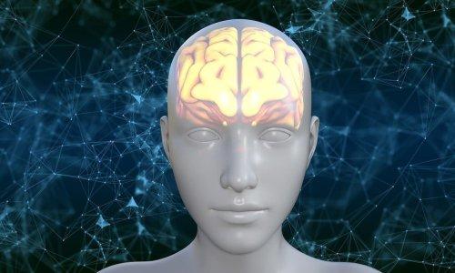 15 Novel Biomarkers for Diseases Predisposing to Dementia Identified - Neuroscience News