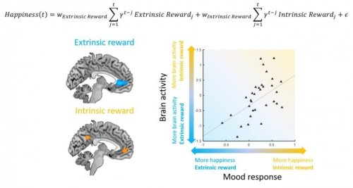 Math Equation of Mood Can Predict Your Preferences Better Than You Can - Neuroscience News