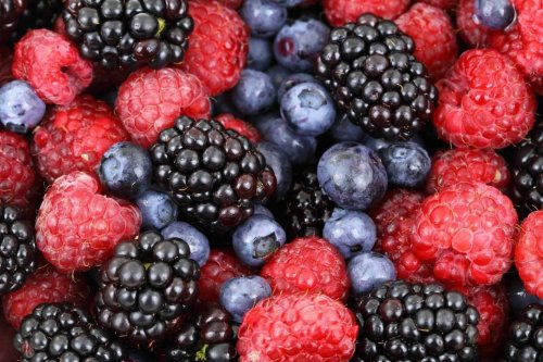 Fruit Compound May Have Potential to Prevent and Treat Parkinson's Disease