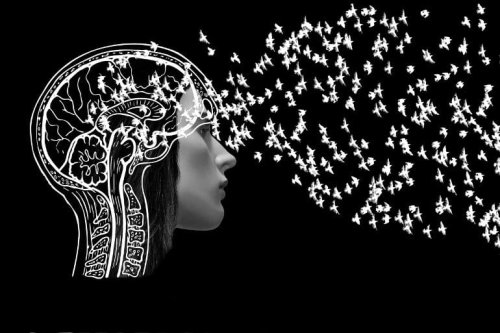 How We Retrieve Our Knowledge About the World - Neuroscience News