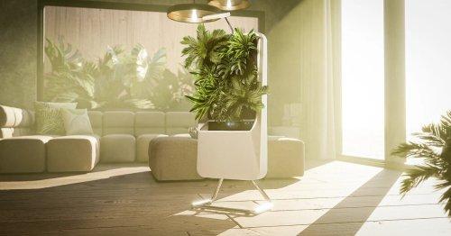 Respira's Smart Garden: Dawn of the six-hundred-dollar pot plant