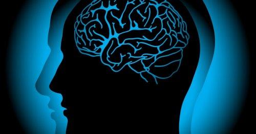 Experimental drug prevents dangerous brain tangles following concussion
