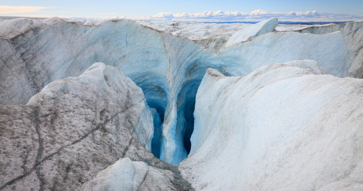 Fossilized plants discovered a mile beneath Greenland ice sheet