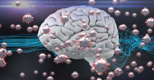 Study reveals how COVID-19 can directly damage brain cells