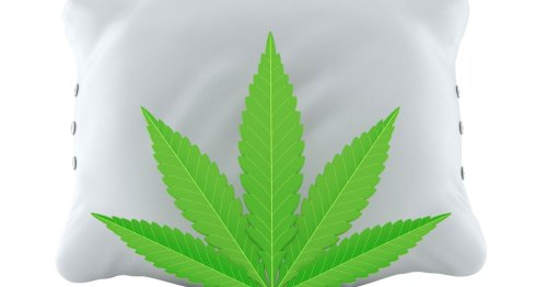 Positive data from 1st clinical trial into cannabis for chronic insomnia