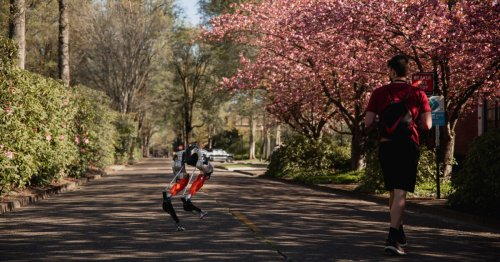Cassie the bipedal robot uses machine learning to complete a 5km jog