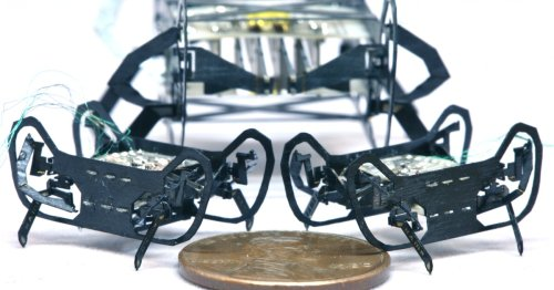 HAMR-JR is one of the smallest, fastest walking robots ever