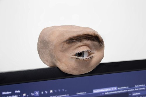 Anthropomorphic webcam looks – and moves – like a human eye