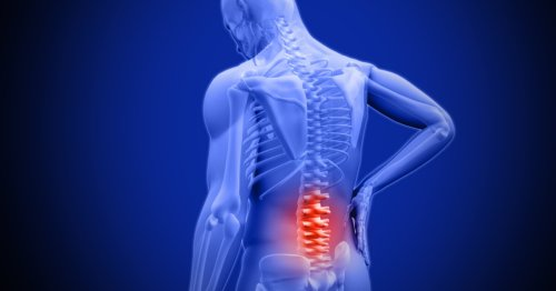 Anti-aging drugs preserve spinal discs to target age-related back pain