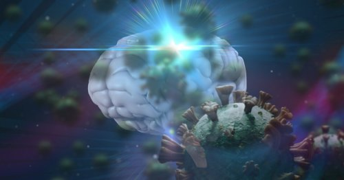 Stanford study finds inflammation in brains of deceased COVID-19 patients