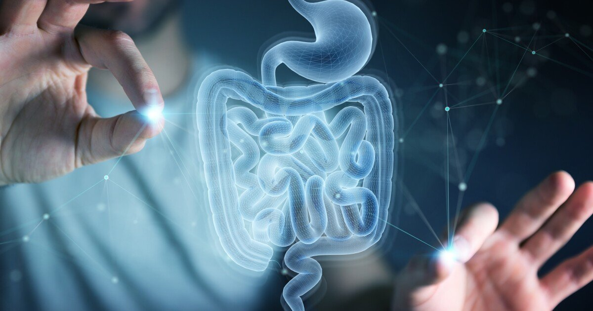 New evidence links age-related cognitive decline & the gut microbiome