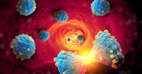 Protective protein prevents cancer cells spreading into the bloodstream