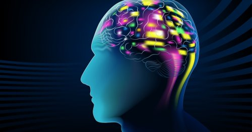 Experimental brain implant instantly detects and relieves pain