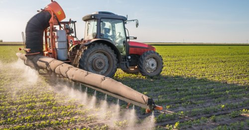 EPA finally bans common food pesticide after years of court battles