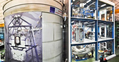 Exciting signals from dark matter experiment could herald new physics