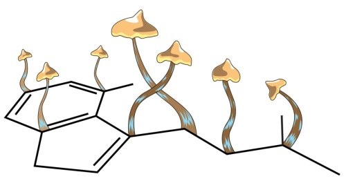 Psychedelic psilocybin therapy for depression granted Breakthrough Therapy status by FDA