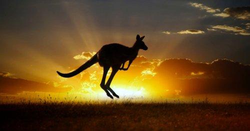Climate startup taps harsh Australian sun for scalable carbon capture