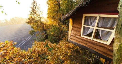 Kulturinsel Einsiedel: A night in Germany's bizarre Treehouse Hotel