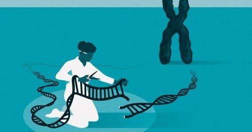CRISPR gene-editing inventors awarded 2020 Nobel Prize in Chemistry