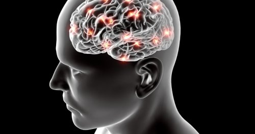 New study links Alzheimer's disease with liver function and diet
