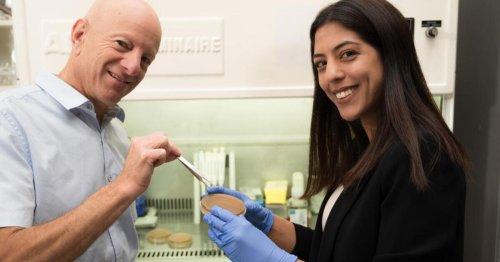 Molecular tweezers pick apart the defenses of drug-resistant bacteria