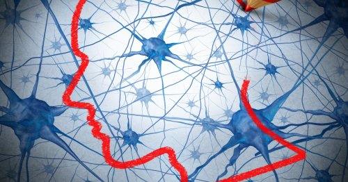 New drug protects neurons to alleviate Parkinson's symptoms in mice