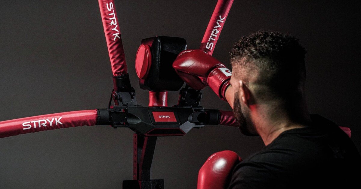 Punching robot designed for mixed martial arts training