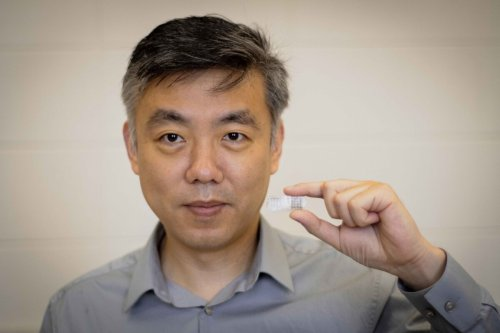 Self-powered biodegradable patch zaps broken bones to heal them