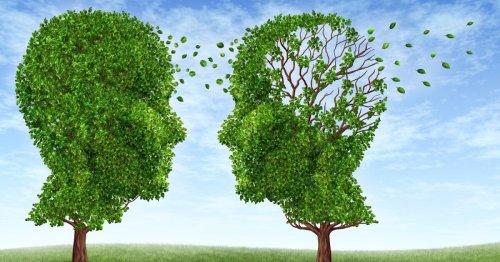 Metastudy homes in on 10 strongest risk factors for Alzheimer's disease