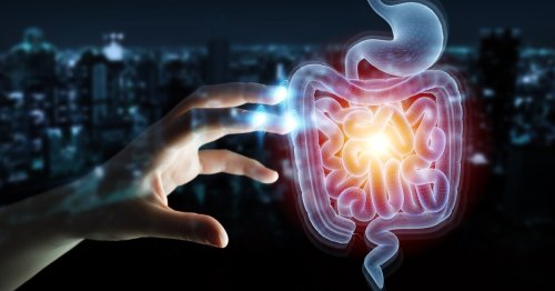 Parkinson's linked to overabundance of opportunistic gut pathogens