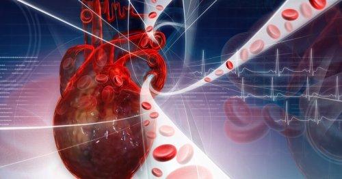 No sweat: Yoda1 molecule activates the body's exercise sensor
