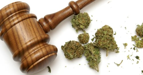 Optimal minimum legal age for recreational cannabis is 19, study says