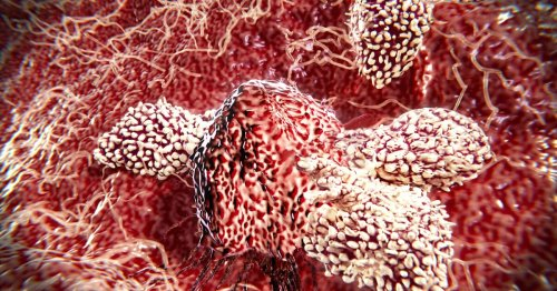 Microbiome metabolites may boost cancer immunotherapy effectiveness