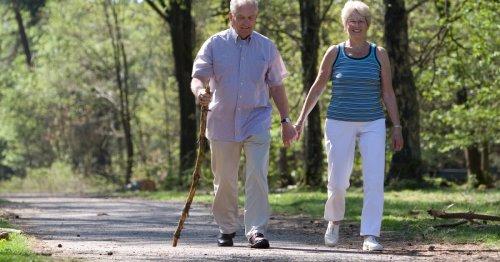 Gait analysis of dementia patients reliably identifies Alzheimer's