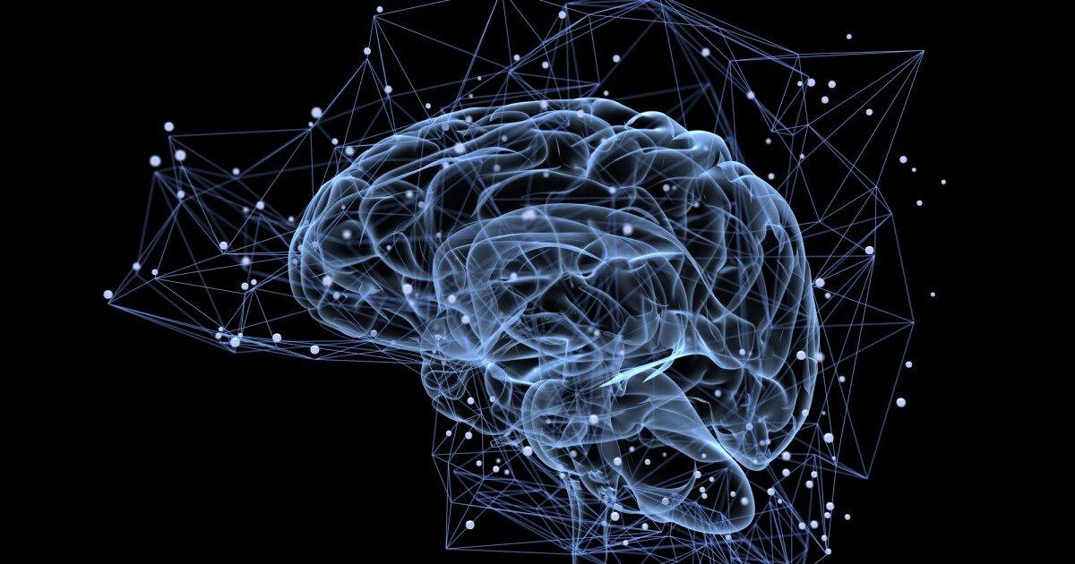 Study finds hemorrhagic brain disease caused by gut bacteria metabolite