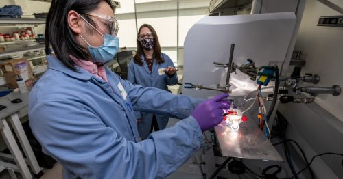 Artificial photosynthesis device improves its own efficiency over time