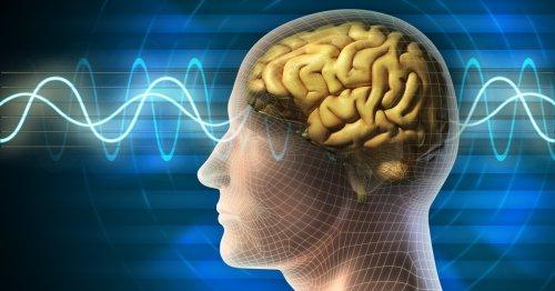 Negative feelings of body image linked to weak gut-brain signals