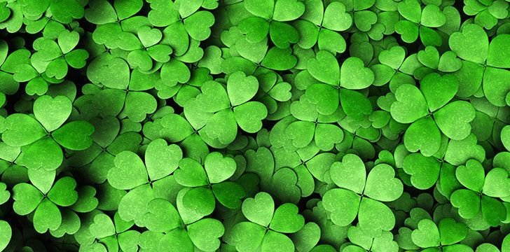 8 Facts About Saint Patrick Day You Might Not Know