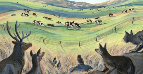 The Myth of Regenerative Ranching